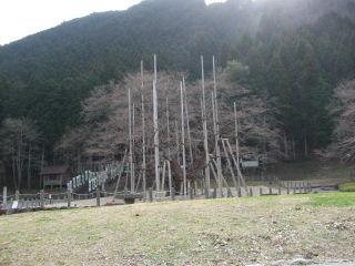 2010_03170010.JPG